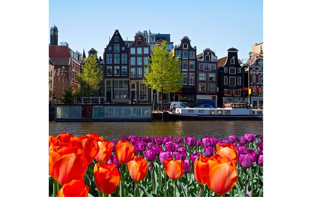 Амстердам для детей